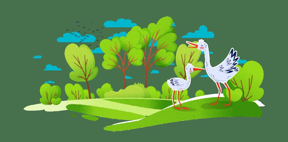 Les petites cigognes _ illustration _ Cigognes