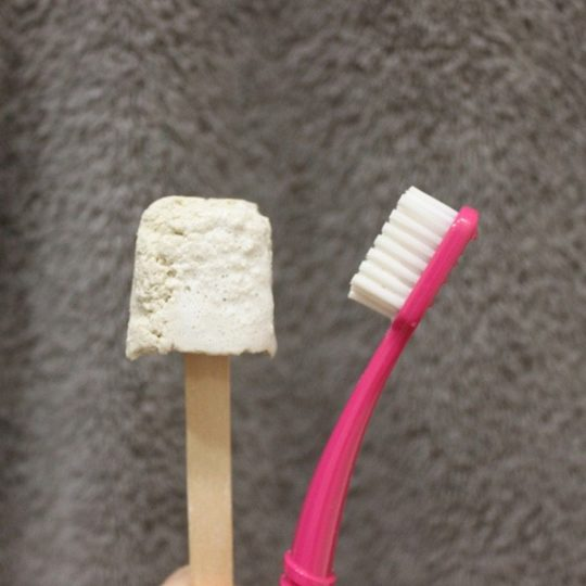 Dentifrice solide à la menthe poivrée - Lamazuna